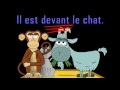 VIDEO - Où est le chat?